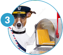 Print dog license