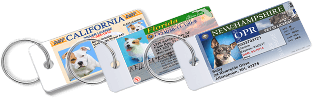 8dfcbf7026dc Pet Drivers License – The Official Pet ID Tag for all 50 States